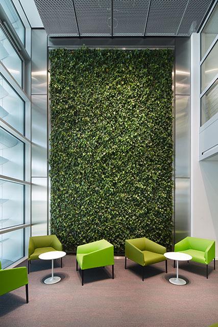 Interiorfotografie Fabian Aurel Hild für Hydroflora bei BASF, Ludwigshafen